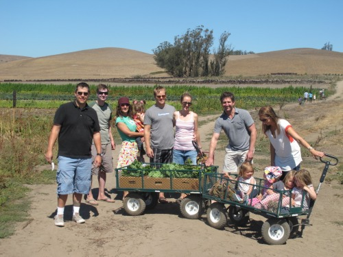 U-Pick Weekends at Bloomfield Farms
