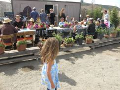 UPick Sunday Fun Farm Brunch